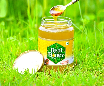 Raw Sunflower Honey<br /> From Rs.300.00